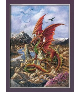 Dragon Fire poster (30 x 40,5 cm)