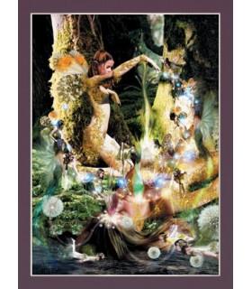 Affiche Création (30 x 40,5 cm)