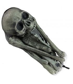 Les ossements humains, 18 pièces
