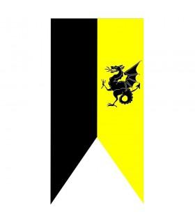 Bannière médiévale de dragon bicolore