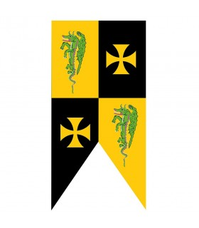 Le templier standard médiéval croise des dragons