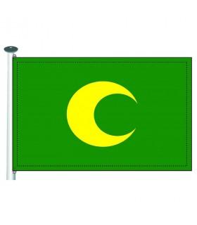 Bandera Moros media luna amarilla en fondo verde