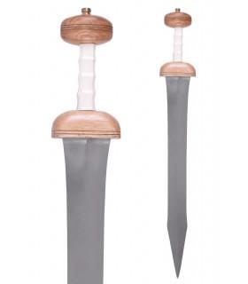 Épée Romaine Gladius Mayence, avec gaine, siècle je pour.C.
