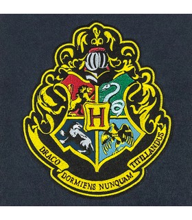 Drapeau de la paroi de l'École de Poudlard, Harry Potter